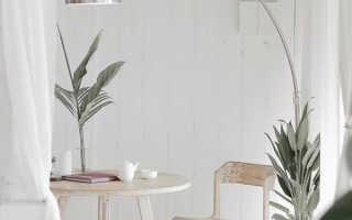 Как создать уютный интерьер с помощью растений: идеи на фото