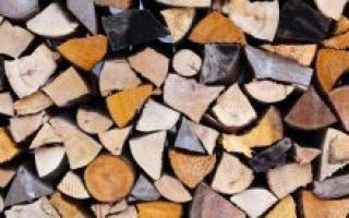 Еловые дрова: плюсы и минусы, альтернативы