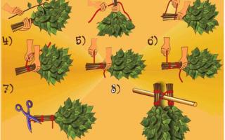 Как правильно выбрать веник для бани