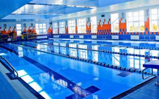 Лучшие методы обеззараживания воды в бассейне
