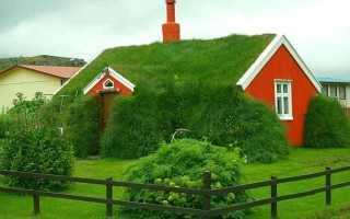 Как сделать зеленую крышу на дом: инструкция