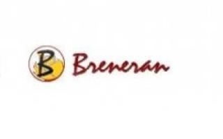 Печь для бани «Бренеран»: технический обзор, установка своими руками