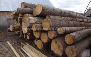 Какая древесина лучше: ель или сосна